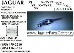 Девять жизней Jaguar